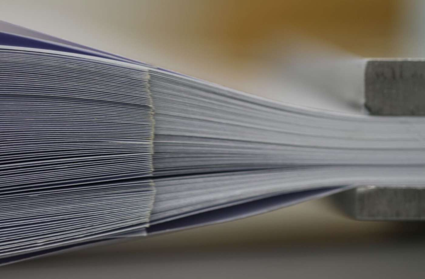 Gros plan des pages imbriquées. À droite de l'image, on distingue les mords qui serrent les pages. © Frédéric Restagno, Christophe Poulard