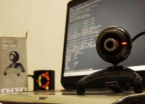 Les consultations pourront être réalisées à distance, grâce à Internet et aux webcams. © phylevn, Flickr CC by 2.0