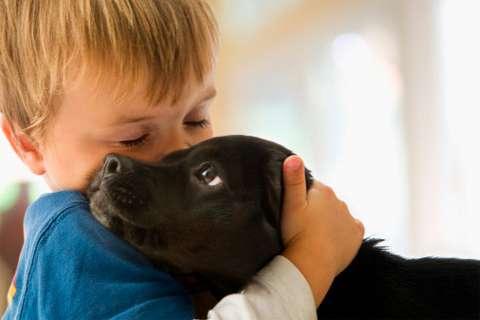 On le sait depuis longtemps, avoir un chien dans l'enfance diminue le risque d'allergie et d'asthme. Dans cette nouvelle étude, des chercheurs viennent de mettre le doigt sur la raison : les bactéries intestinales. © o5com, Flickr, cc by 2.0