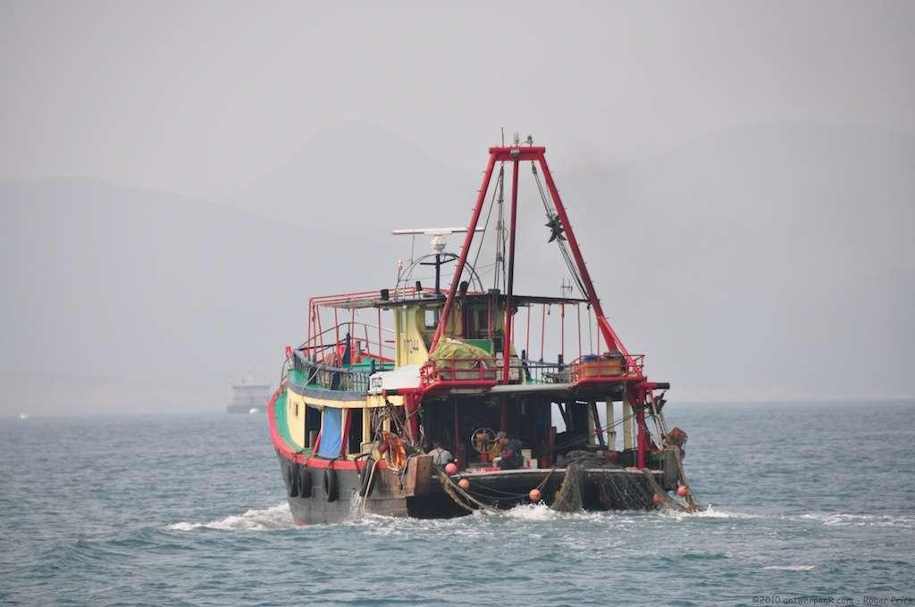 La Chine compterait environ 900 navires dits hauturiers, c'est-à-dire prévus pour passer plus de 96 h en mer. © antwerpenR, Flickr, cc by nc sa 2.0