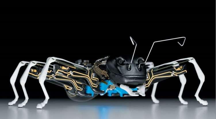 La société allemande Festo est spécialisée dans la conception de systèmes industriels automatisés. Pour développer ses technologies, elle développe des robots qui s'inspirent au plus près du vivant. © Festo
