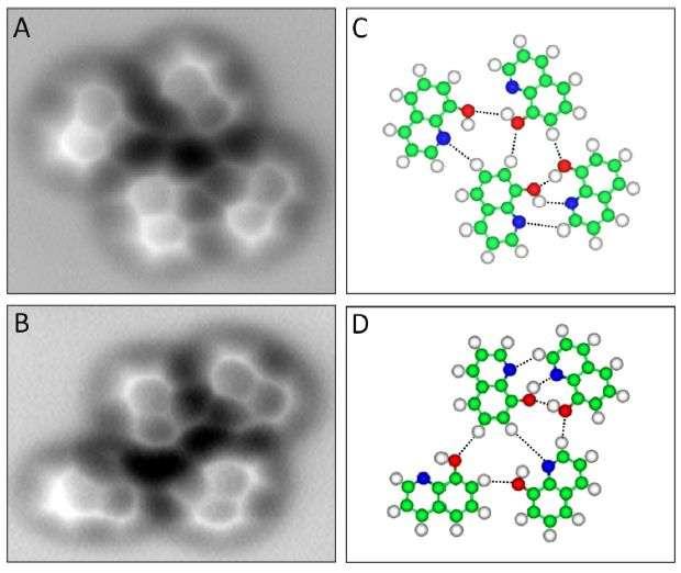 Des molécules de 8-hydroxyquinoléine. Sur les images de droite : C (carbone) = vert, H (hydrogène) = blanc, O (oxygène) = rouge, N (azote) = bleu, et les liaisons hydrogène sont représentées en pointillés. Ces molécules, sur une surface de cuivre, peuvent se retrouver liées par des liaisons hydrogène à basse température. C'est ce que l'on constate sur les deux images à gauche prises avec un microscope à force atomique. © Science, AAAS