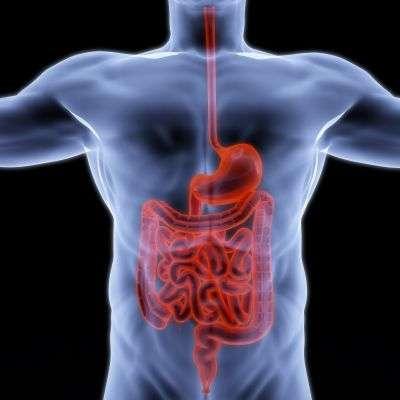 La capsule endoscopique autopropulsée permet d'obtenir des images du côlon et de l'estomac, en étant dirigée par une manette. © Dim Dimich/shutterstock.com