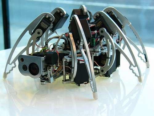 L'hexapode: un robot à six pattes. © automatthias CC by-sa