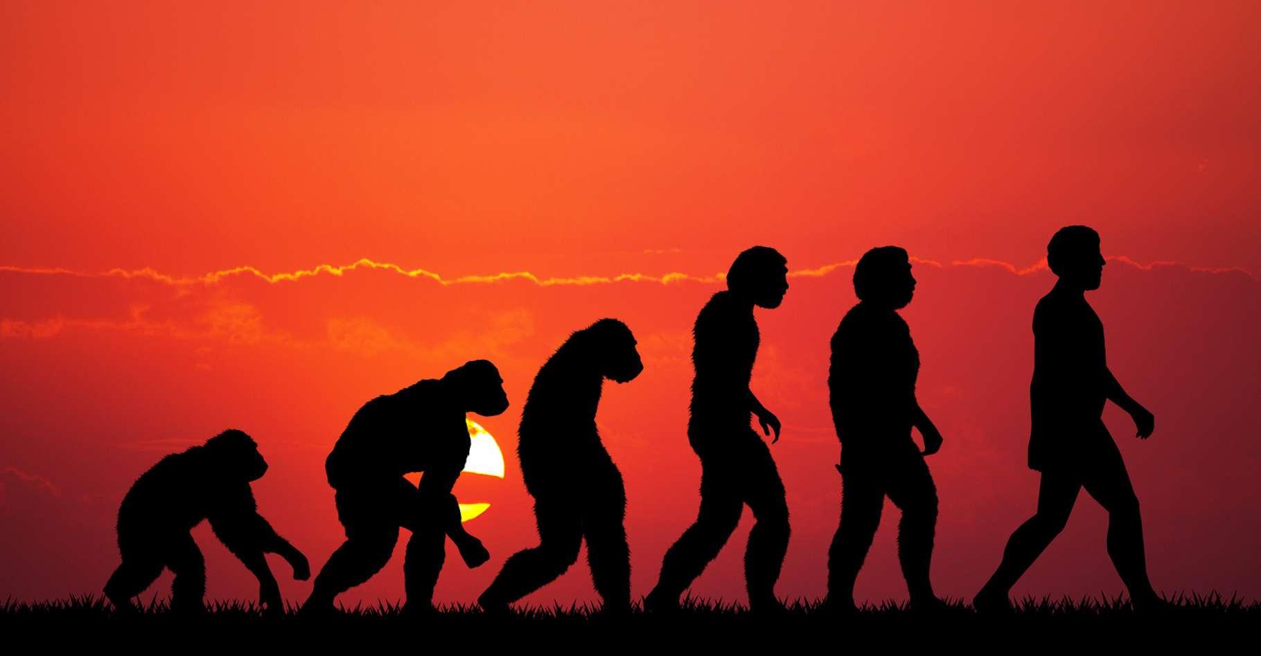 indices de datation relatifs fossiles Quel âge est approprié pour commencer à dater