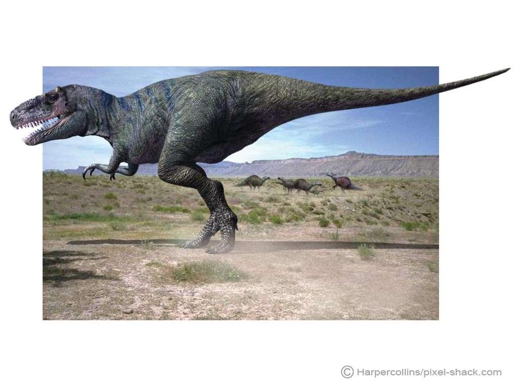 Le tarbosaure, ou Tarbosaurus, au sommet de la chaîne alimentaire