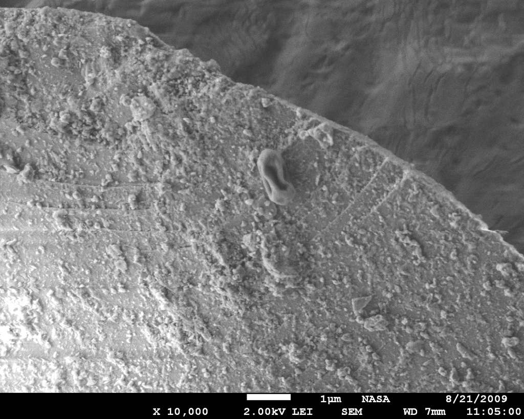 La microscopie électronique à balayage révèle une spore bactérienne en forme de raisin sec, au sommet d'un grain de poussière qui provient d'un des panaches analysés par l'observatoire du mont Bachelor. © Nasa