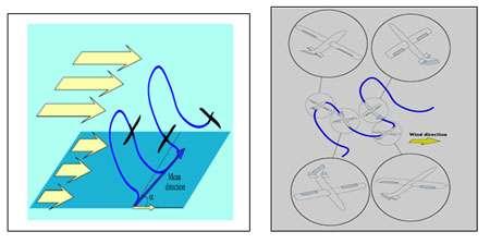 Un motoplaneur a imité le vol des albatros pour optimiser son vol. © Stéphane Doncieux, Jean-Baptiste Mouret, Renaud Barate, AnimatLab, LIP6 & Isir