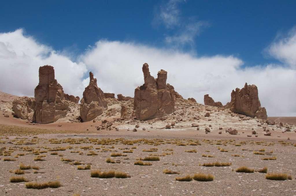 La lave érodée du désert d'Atacama