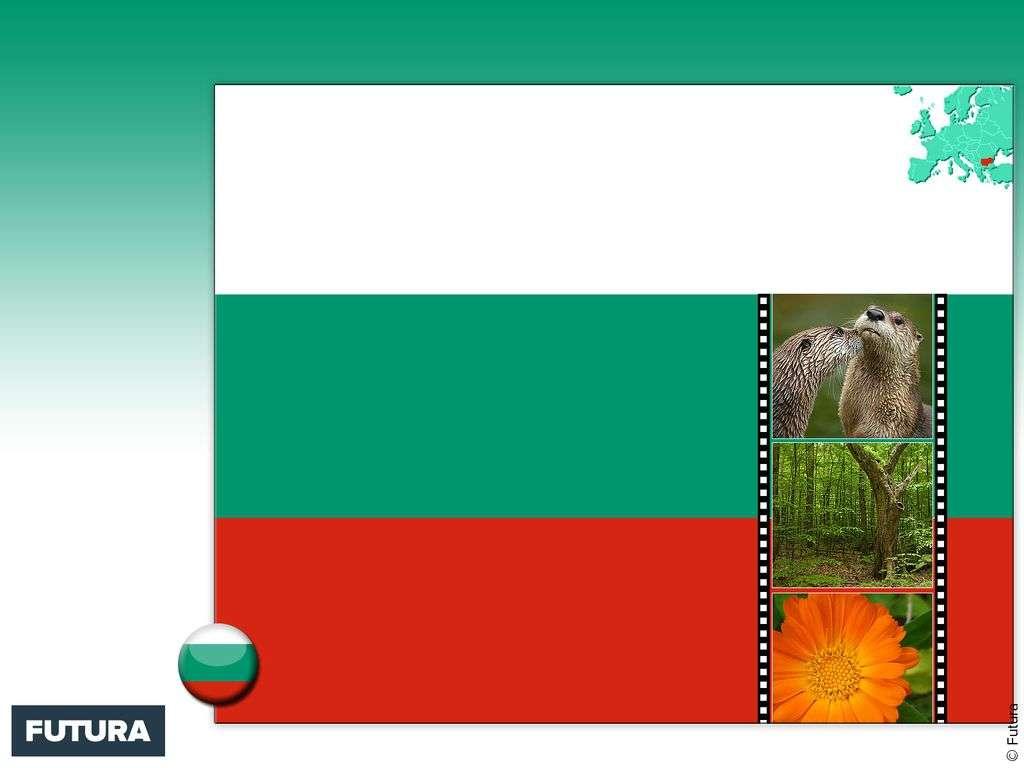 Drapeau : Bulgarie
