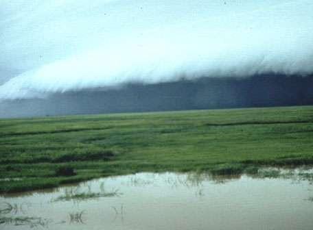 Au Sahel, dans la région du delta central du Niger, la mousson s'accompagne de l'arrivée de lignes de grain. Celles-ci peuvent s'étendre sur plusieurs centaines de kilomètres de longueur et donner lieu à de violentes précipitations. © CNRS Photothèque, Marie-Françoise COUREL