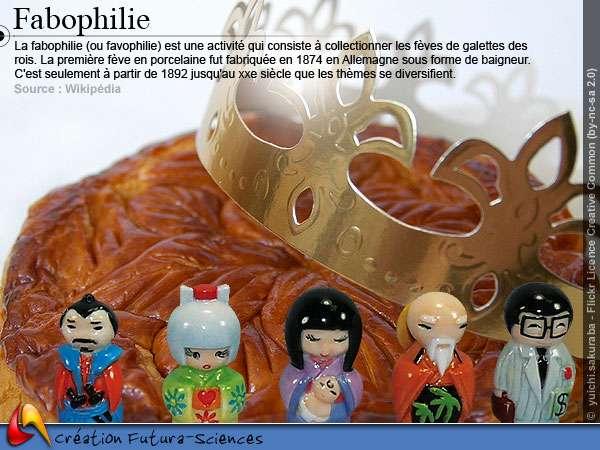Fabophilie - Fèves galettes des rois
