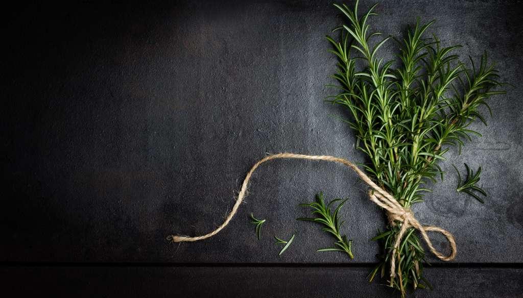 En cuisine, au jardin ou dans la pharmacie, le romarin s'avère très utile à bien des égards. © lblinova, Fotolia