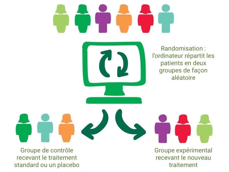 La randomisation permet d'éviter les biais statistiques dans un essai clinique. © C.D, Futura
