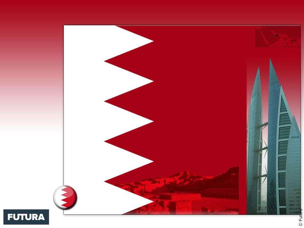 Drapeau : Bahreïn