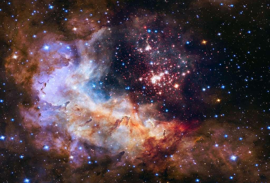 Une grappe de bébés étoiles à l'ornière d'un épais nuage de gaz et de poussières