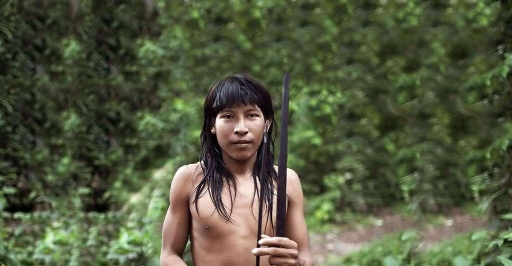 Jeune awá. © Survival