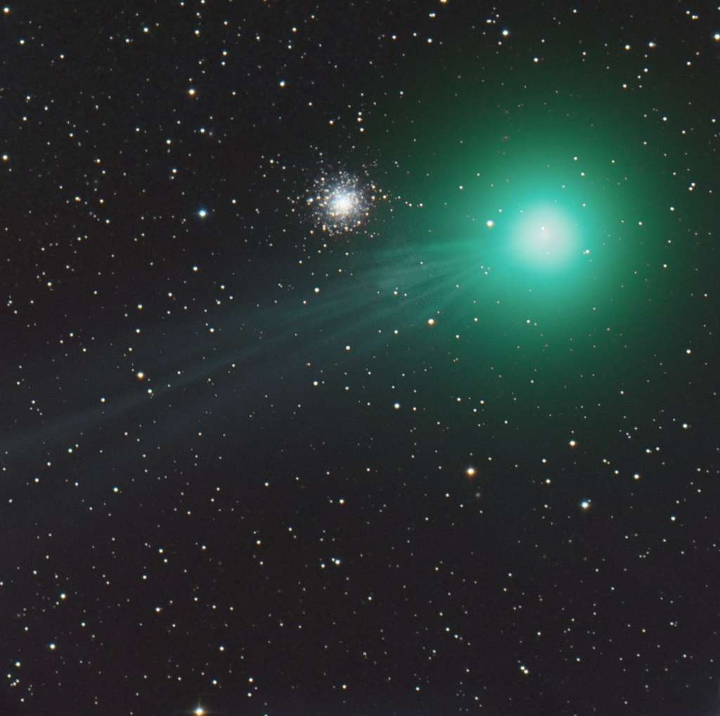 Lors de sa traversée de la constellation du Lièvre, le noyau de C/2014 Q2 et sa longue queue panachée se sont affichés à côté de l'amas globulaire Messier 79 (M79). © Robert Mueller