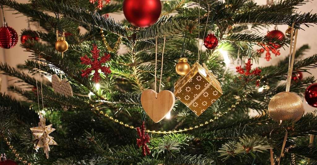 Les boules de Noël ne sont pas les seules décorations que l'on puisse suspendre à son sapin. © ExposureToday, Pixabay, CC0 Creative Commons