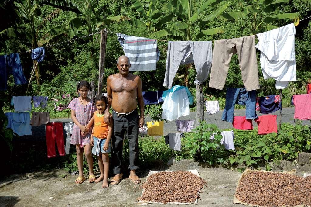 Le cacao, une culture de paysans pauvres. © D. Gentilhomme