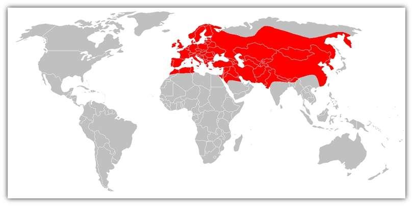 Aire de répartition de la loutre européenne. © Domaine public