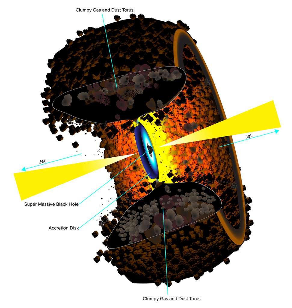 Une coupe schématique montrant le trou noir supermassif au cœur de la galaxie elliptique Cygnus A. © Bill Saxton, NRAO/AUI/NSF