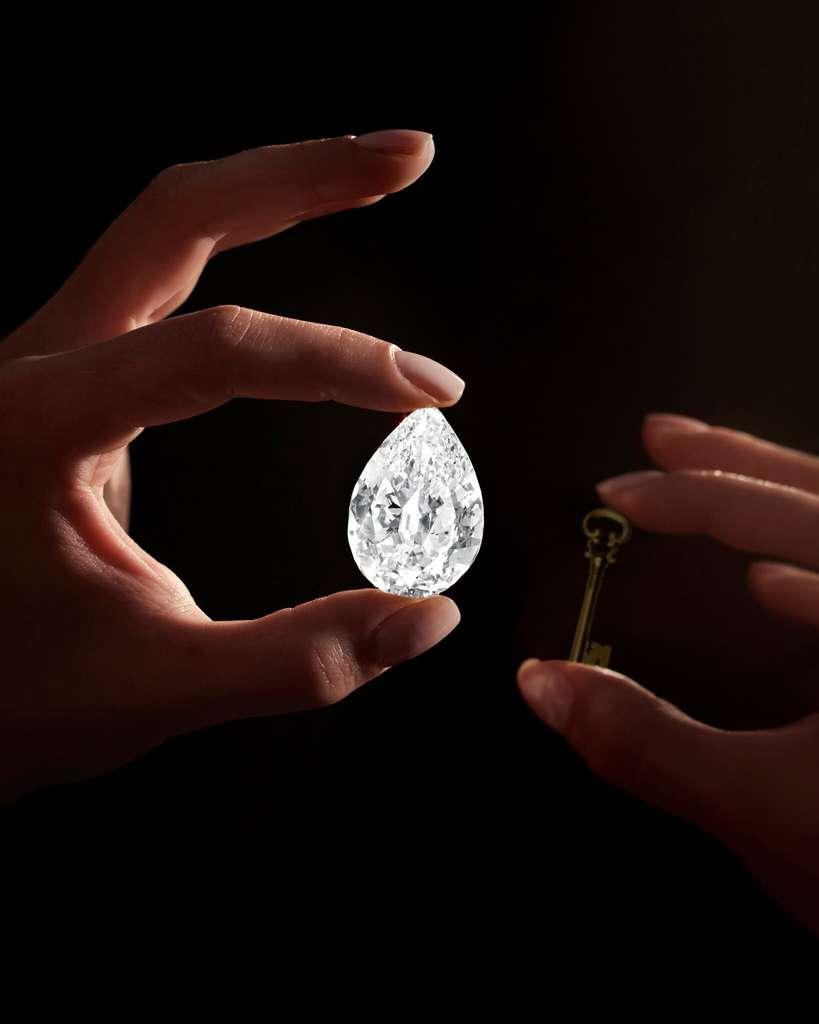 Étrange paradoxe pour l'un des plus anciens matériaux produits par la Terre qui pourra être acheté par la plus récente monnaie universelle. Courtesy of Sotheby's © Sotheby's