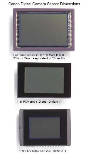 Divers formats de capteurs de reflex (en bas, format APS-C). © Canon