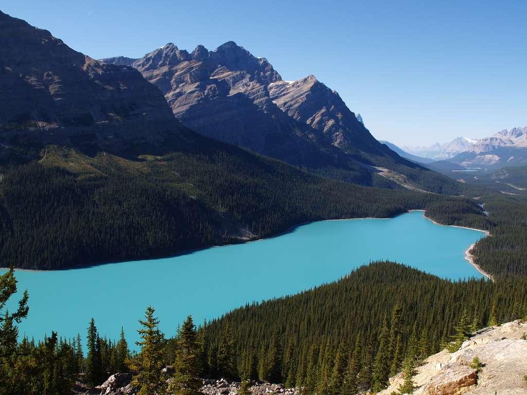 Le lac Peyto, beauté du Canada