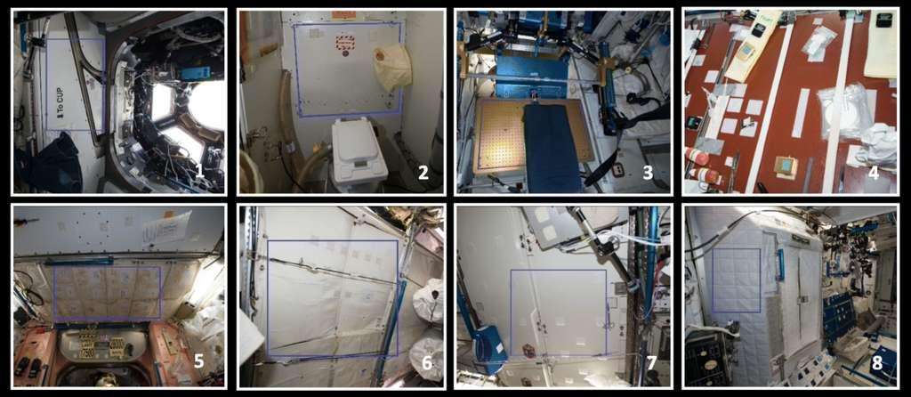 Photographies des huit sites au sein de la partie américaine de l'ISS où des échantillons ont été prélevés à l'aide de lingettes stériles par deux astronautes de la Nasa, en mars 2015, mai 2015 et mai 2016 : la cupola ou coupole d'observation (1), les toilettes (2), l'appareil de musculation (3), la table à manger (4), un espace de rangement (5), l'intérieur d'un module de stockage (6), un panneau près du distributeur d'eau (7), les quartiers des astronautes (8). © Aleksandra Checinska Sielaff et al., Microbiome, 2019