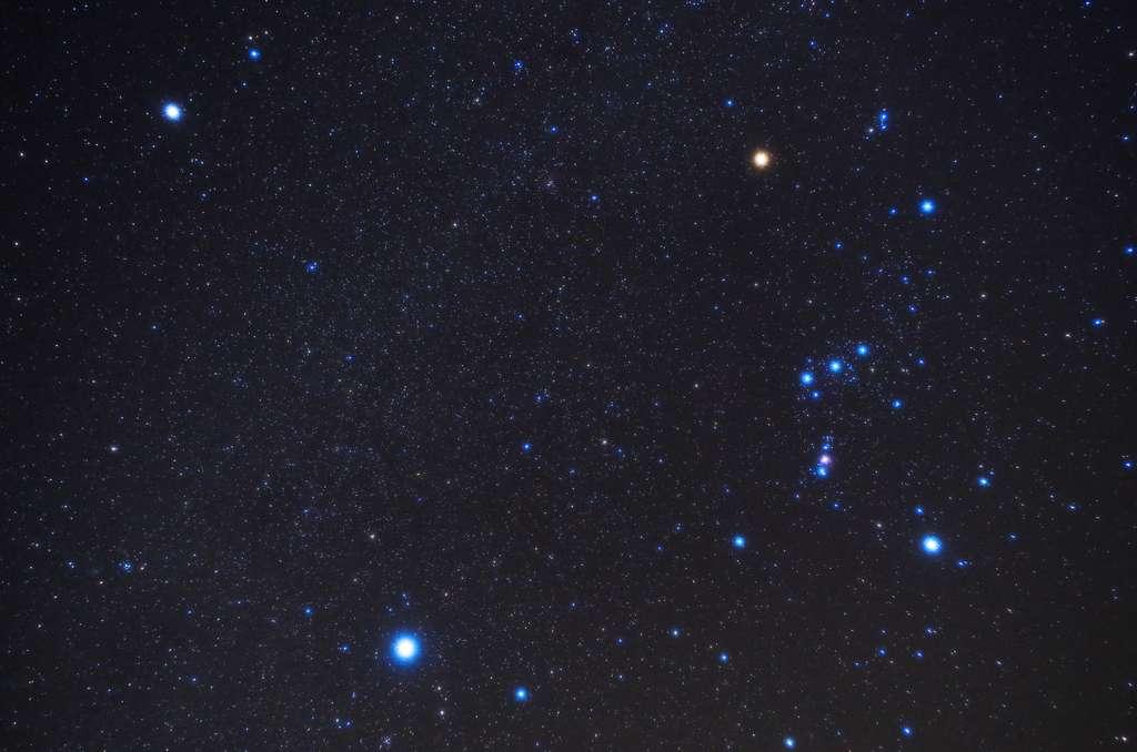 À droite, la constellation d'Orion que l'on reconnaît tout de suite aux trois étoiles de sa ceinture et les brillantes Bételgeuse (épaule) et Rigel (pied). En bas à gauche, Sirius, l'étoile la plus brillante du Grand Chien. En haut à gauche, Procyon (Petit Chien) © carrottomato, fotolia