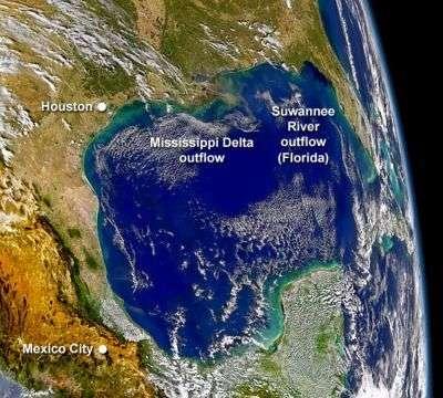 Dans le golfe du Mexique (vu ici en 2004), l'image satellite met bien évidence la prolifération des algues planctoniques (traînées vertes) sur de vastes surfaces, provoquée par le rejet d'éléments nutritifs par l'activité humaine. © SeaWiFS Project, Nasa Goddard et Orbimage