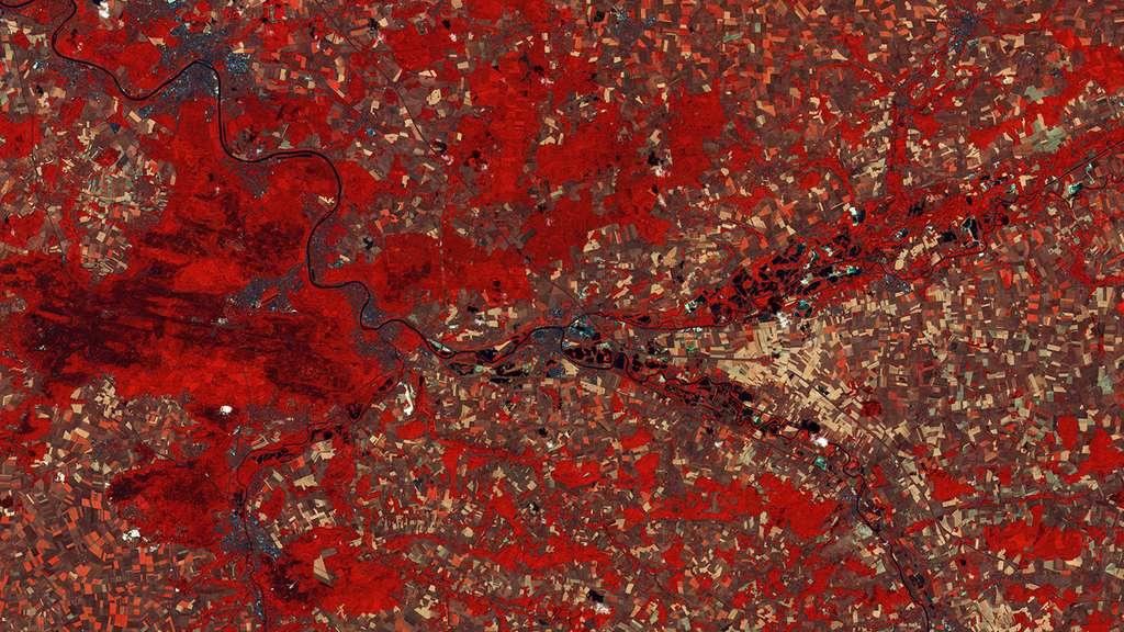 L'Ile-de-France observée par Sentinel 2A en juillet 2015. Les fausses couleurs permettent de rendre les différences plus visibles. © Copernicus Sentinel data