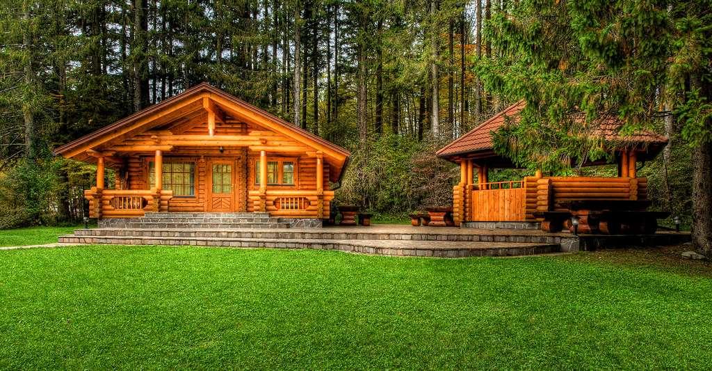 Il existe plusieurs types d'inertie. Ici, des maisons en bois. © Shutterstock, Samo Trebizan