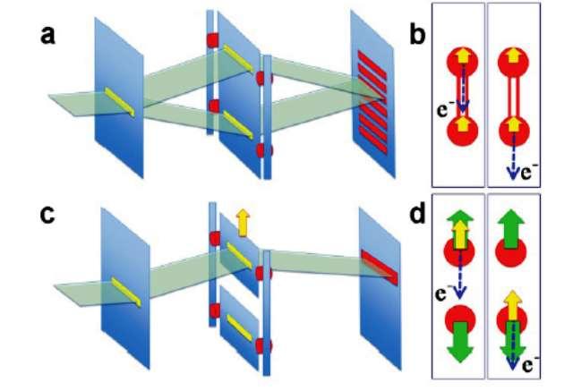 Représentation schématique de l'expérience de pensée à double fente née du débat entre Einstein et Bohr, avec des fentes massives couplées (a) et découplées (c). De même, la matérialisation schématique de cette expérience de pensée basée sur le processus de photo-ionisation moléculaire où les deux fentes sont remplacées par deux atomes d'oxygène couplés (b) et découplés (d) émettant des électrons Auger (voir les explications ci-dessous). © Synchrotron Soleil