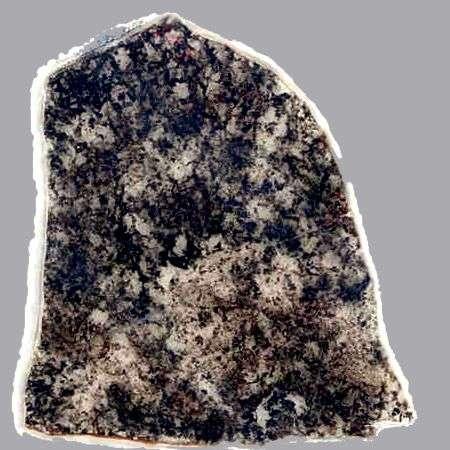 Cette lame de roche est âgée de 1,8 milliard d'années. Des fossiles de bactéries sulfureuses ont été trouvés dans les zones sombres. Ils sont essentiellement identiques aux fossiles plus vieux de 500 millions d'années, également trouvés en Australie, et surtout à des micro-organismes modernes. © UCLA Center for the Study of Evolution and the Origin of Life