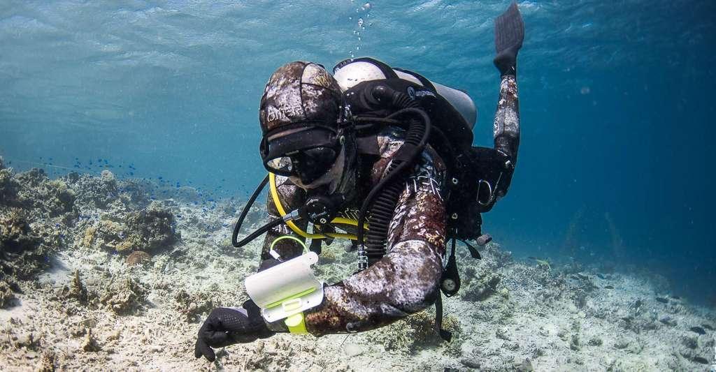 Comment faire pour protéger les coraux ? Ici, plongée de reconnaissance sur une zone de récifs endommagés. © Guillaume Holzer, Coral Guardian, tous droits réservés