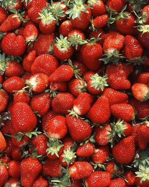 Les fraises, ainsi que des céréales et d'autres fruits et légumes, pouvaient contenir des résidus de bromure de méthyle. Ce produit, désormais interdit, ne devrait plus être retrouvé sur nos aliments. © ARS, USDA, Wikimedia, domaine public