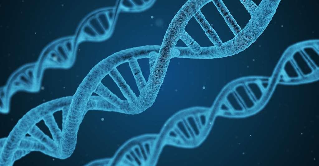 Des chercheurs ont créé un organisme semi-synthétique stable à partir d'un ADN enrichi de deux bases azotées artificielles. © qimono, Pixabay, CC0 Public Domain