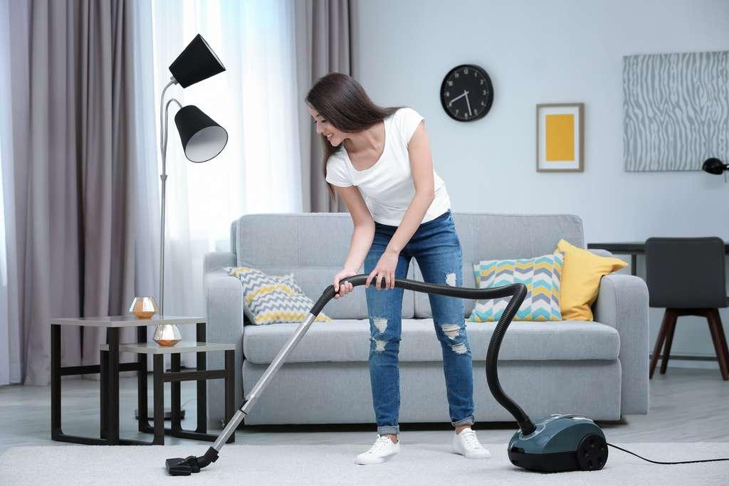 L'aspirateur – une assistance dans chaque ménage. © Africa Studio, Adobe Stock