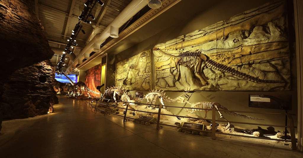 Représentation des dinosaures du Jurassic. © Volkan Taskiran, CC BY-SA 4.0