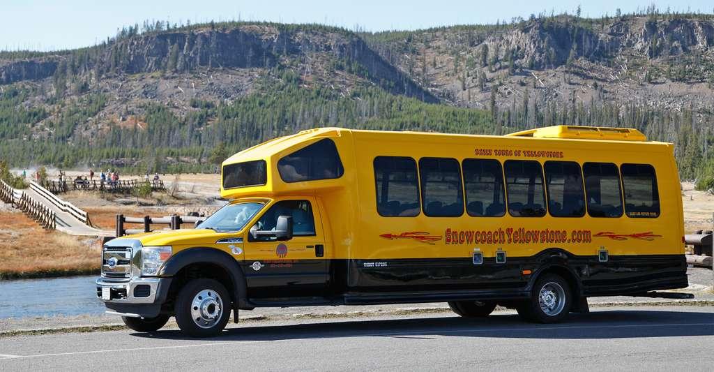 Les bus jaunes du parc. © Antoine - Tous droits réservés