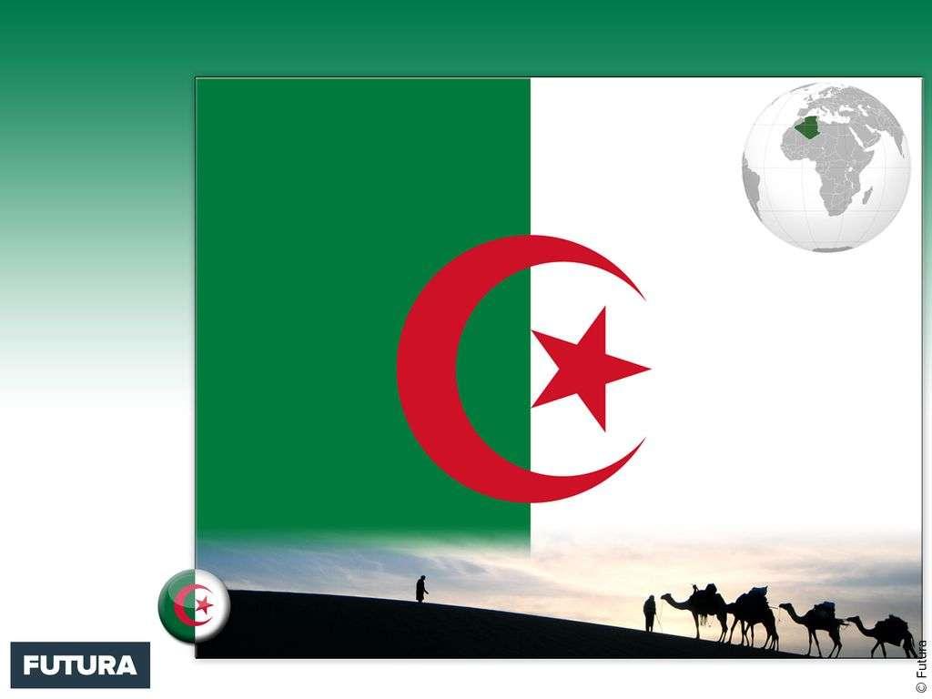Drapeau : Algérie