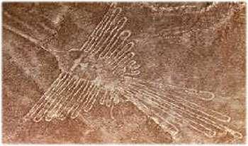 Géoglyphe de la pampa de Nazca : représentation d'un colibri. © DR