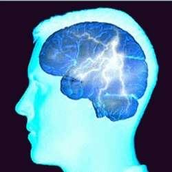 Le diabète et le surpoids diminueraient l'efficacité du cerveau dans les domaines de la prise de décision et de la mémoire. © web-libre.org