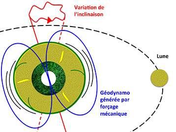 Les effets gravitationnels associés à la présence de la Lune et du Soleil induisent sur Terre la déformation cyclique du manteau et des oscillations de l'axe de rotation. Ce forçage mécanique appliqué à toute la Planète induit de forts courants dans le noyau externe constitué d'un alliage de fer de très faible viscosité. Ces courants sont suffisants pour générer le champ magnétique terrestre. © Julien Monteux, Denis Andrault