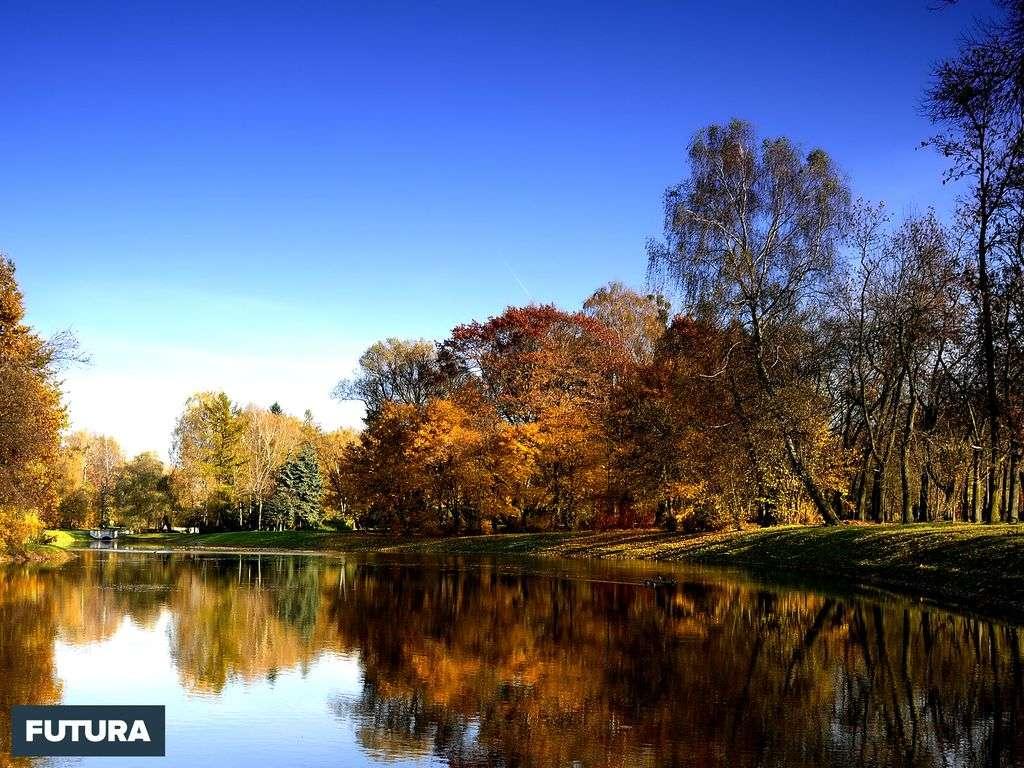 Reflets d'automne sur le lac
