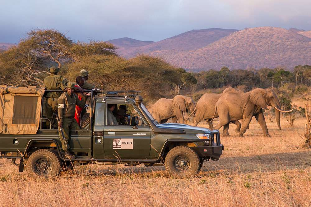 Patrouille pour la sauvegarde des éléphants. © Jeremy Goss, Big Life Foundation, tous droits réservés, reproduction interdite