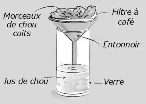Le jus de chou rouge, obtenu après filtration, est un indicateur coloré. © Dunod