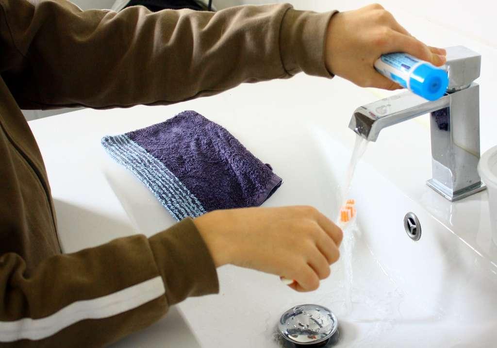 Des gestes simples pour une brosse à dents saine. © Patryssia, Adobe Stock